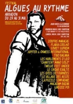Algues au Rythme - Festival Art de la rue et musique - affiche 2014